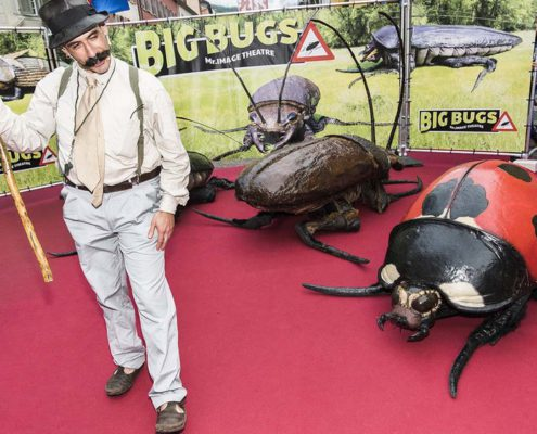 Mr.Image Theatre - Big Bugs Show